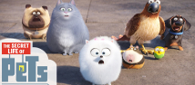 Secret life of Pets News Image