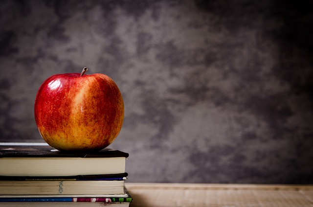 School System Image Apple and Books